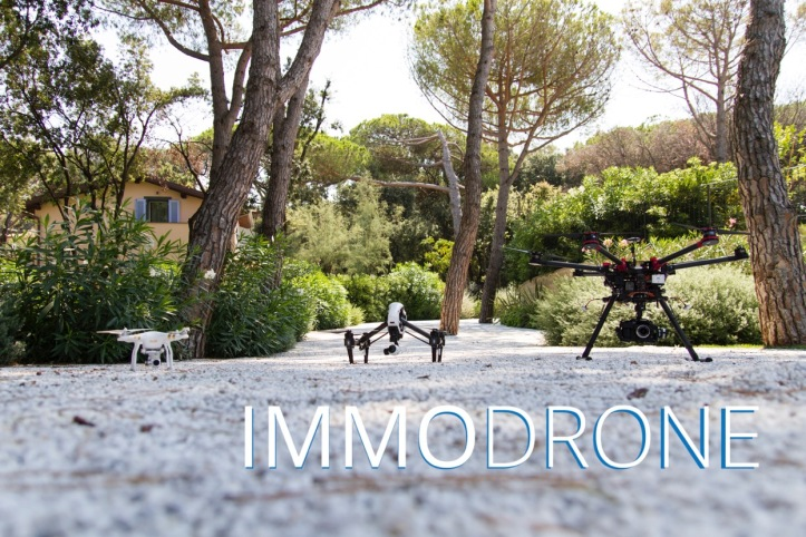 drone 4.jpeg