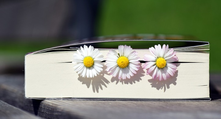 book-2319957_1280