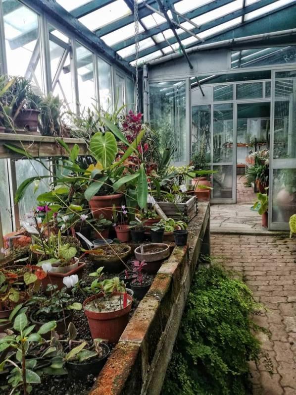 giardinobotanicorea