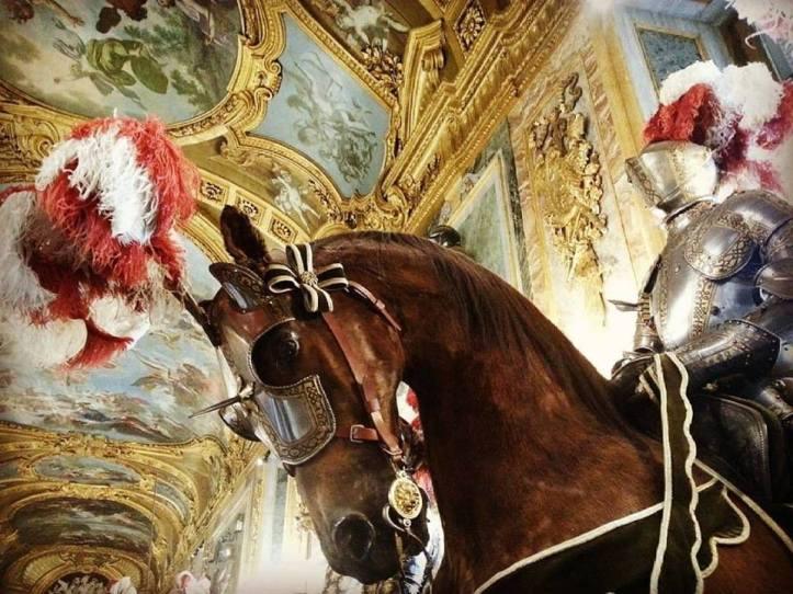 palazzoreale_cavaliere